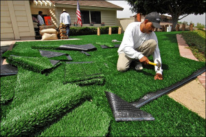 Beautify Your Surroundings with a Grass Alternative