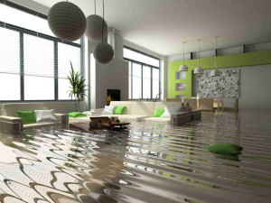 10 Damages Not Covered by Your Home Insurance