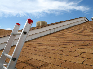 Everything You Need to Know About Fixing Roofs